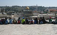 Israel Programs