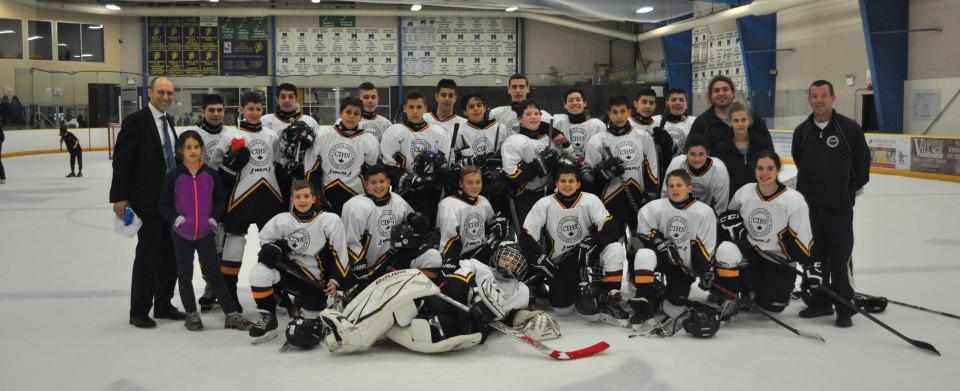 hockey2014